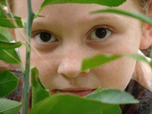 Puutarhurin elämä on yhtä seikkailua